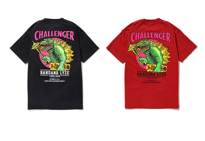 http://www.challengerworks.com/news/FLGSTNEWS.jpg