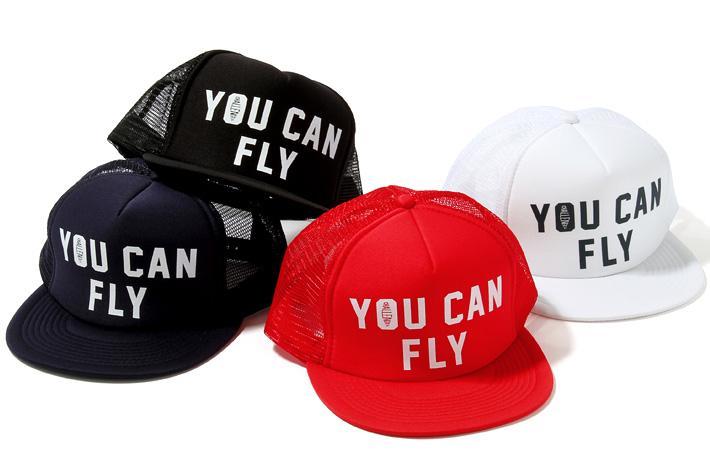 ac014_046_you_can_fly_meshcap.jpg
